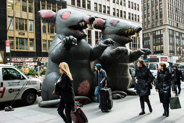 inflatable rats