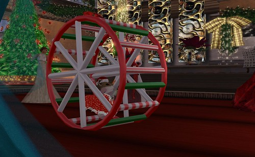 Honour's Hamster Wheel - Photograph by Beq Janus