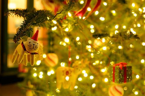 Christmas Tree ΦωΦ 〜♪