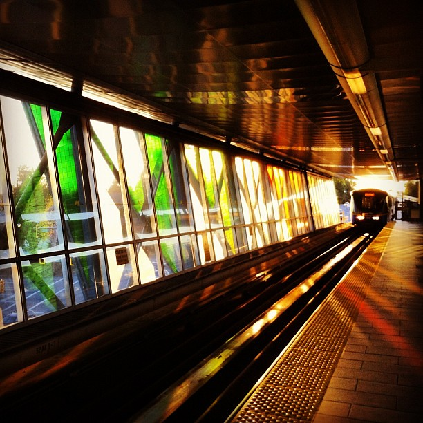 #skytrain into the sunset
