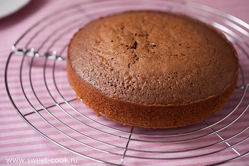 корж для торта торта пьяная вишня