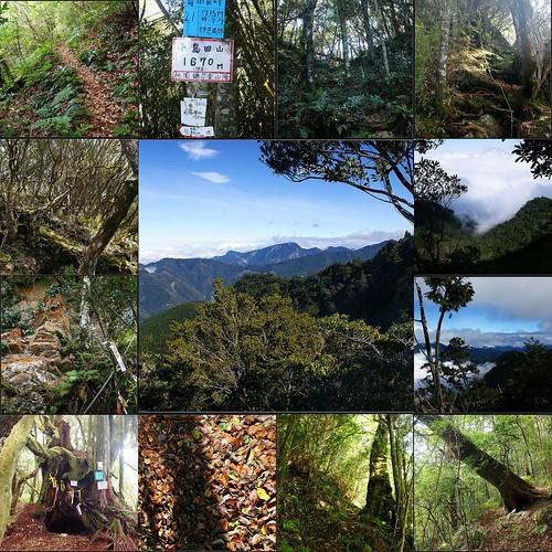 2012-1-8 島田三山 samshiue