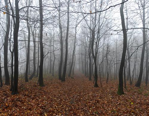 panorama hiking croatia zagreb sljeme hrvatska medvednica