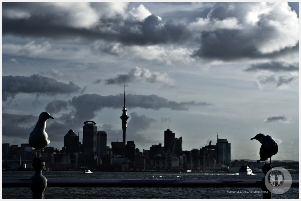 2012 08 30_Magda i Tomek Dookola Swiata_Auckland_DSC_0104