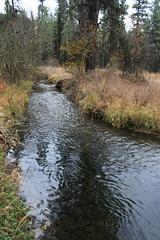 burdette_creek_20121014_020