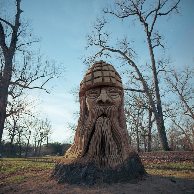Druid hill park tree carvings flickr photo sharing