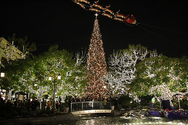 The tallest Christmas tree in Los Angeles.