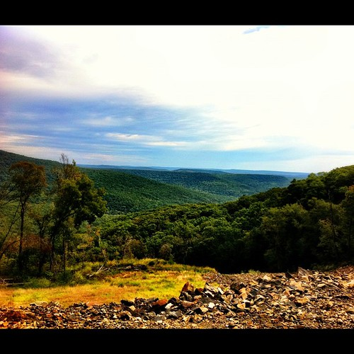 forest ozark hwy23 cameraplus uploaded:by=flickstagram instagram:photo=237583491386512