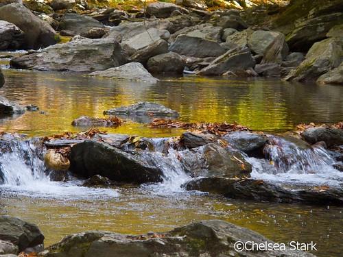 ©ChelseaStark http://www.chelseastarkphotography.com by chelseastarkphotography.com