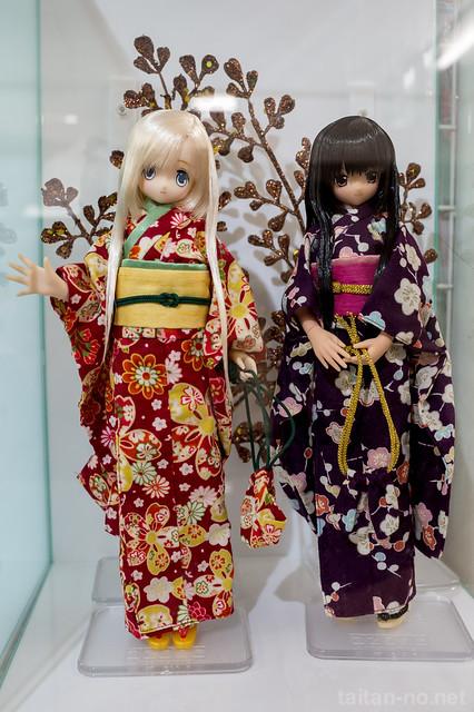 AZONE_LS_Akihabara_20130105-DSC_9731
