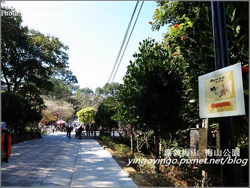 嘉義梅山_梅山公園20130106_R0071505