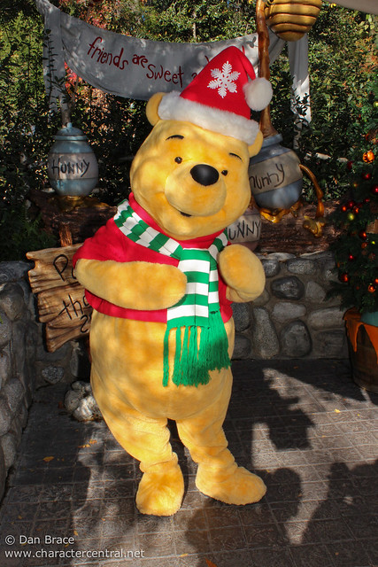 Meeting the Pooh friends