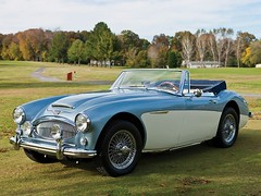 aston martin db2(0.0), ac ace(0.0), coupã©(0.0), automobile(1.0), vehicle(1.0), austin-healey 100(1.0), austin-healey 3000(1.0), antique car(1.0), classic car(1.0), vintage car(1.0), land vehicle(1.0), sports car(1.0),