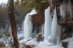Glen Onoko Falls Area