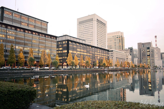 Autumn afternoon in Marunouchi District, Tokyo