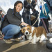 20121208_mac_dogdays_246
