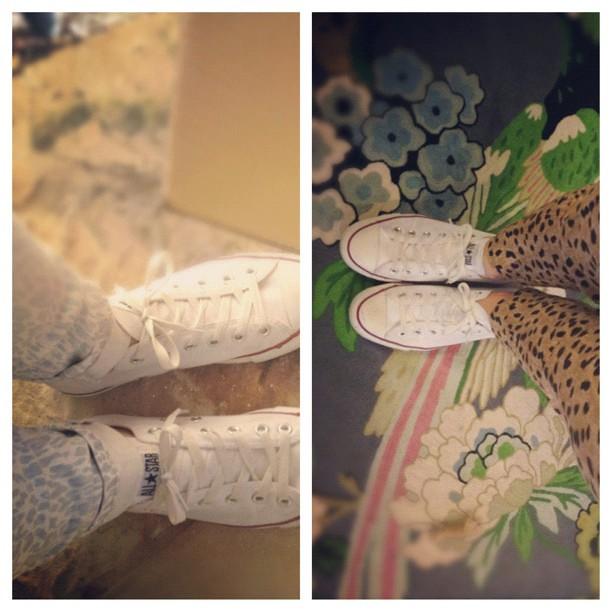 Dueling leopard
