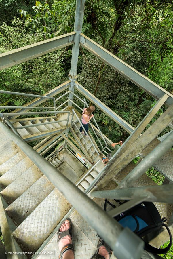Tree Top Tower, Mulu National Park, Malaysia, Sarawak