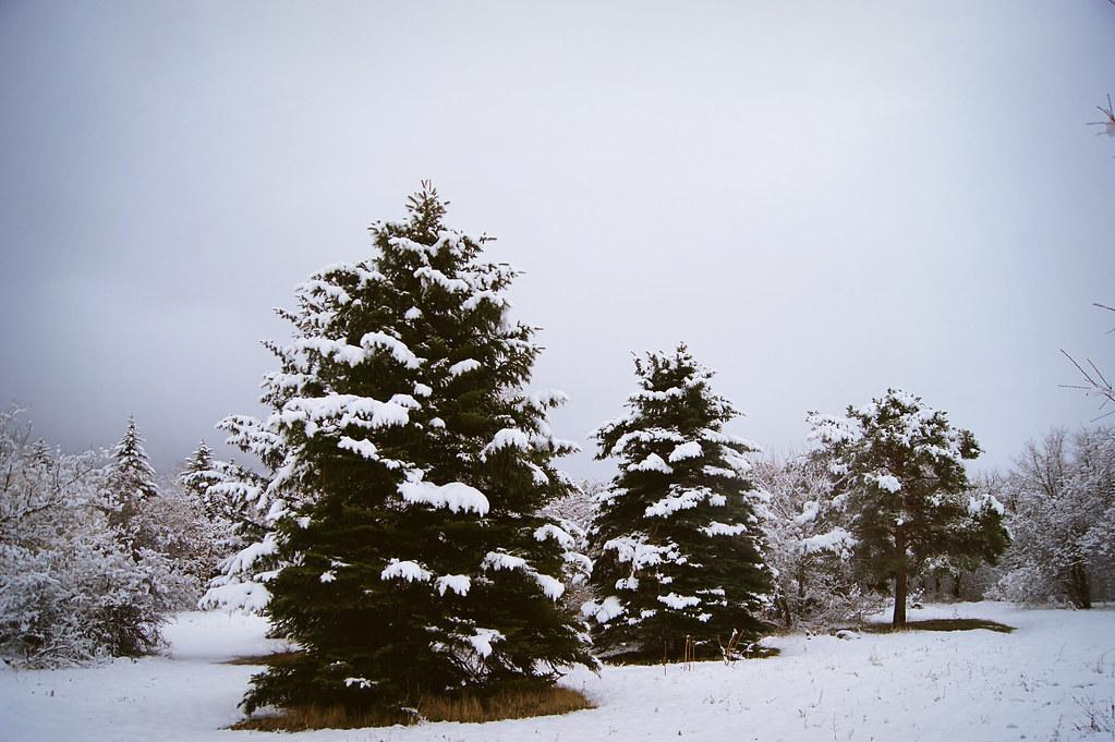 winteradventure2