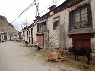 Cidade antiga Gyantse Tibete