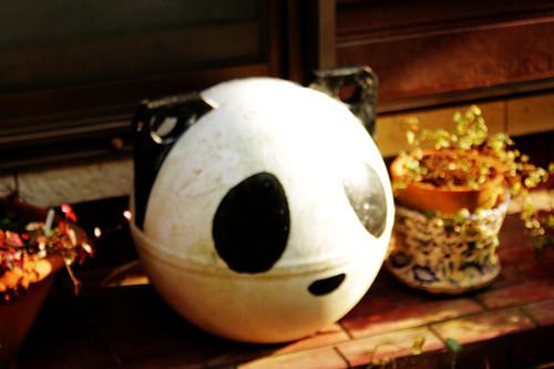 パンダの浮き
