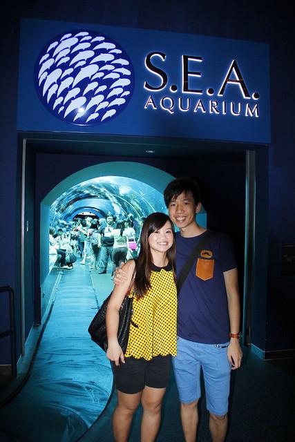 RWS S.E.A Aquarium 415