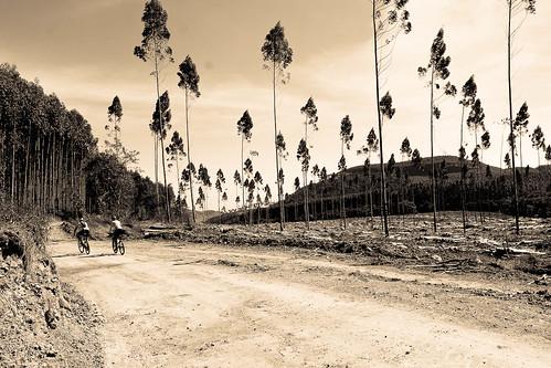 Trilha de Mountain Bike - Andradas - Aguas da Prata - por Pedro Barreto-63