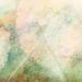 RBF_icontex_1.13_3_006