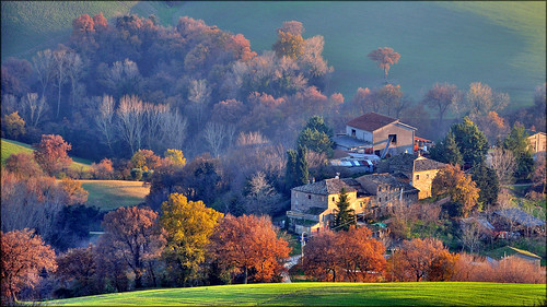 nella vecchia fattoria by Luigi Alesi