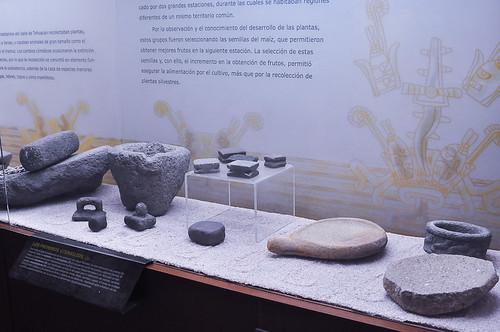 Museo del Valle de Tehuacán (13)