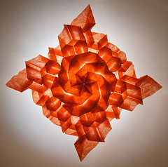 Origami - Tessellations 2013