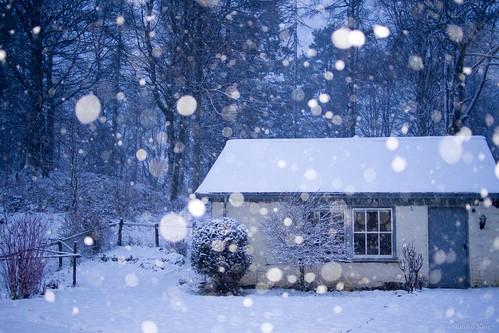 夕方の降雪