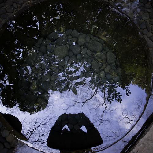 Meiji Jingu (Shrine) Clear Spring Well, Self Portrait