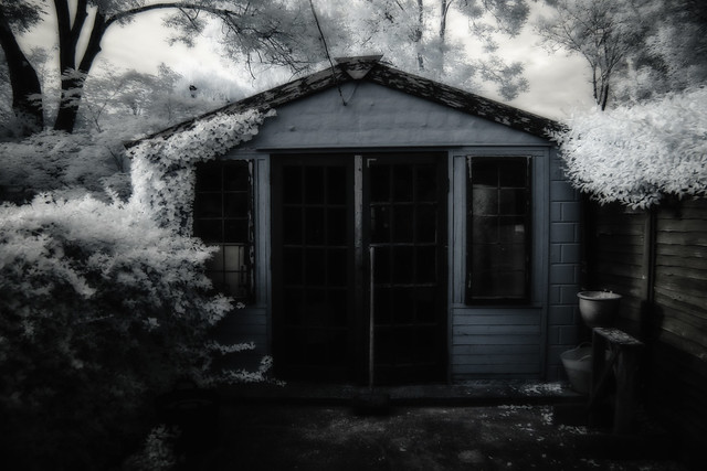The shed-