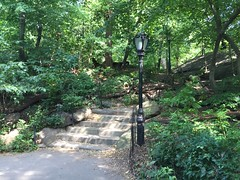 Central Park stairs by f l a m i n g o