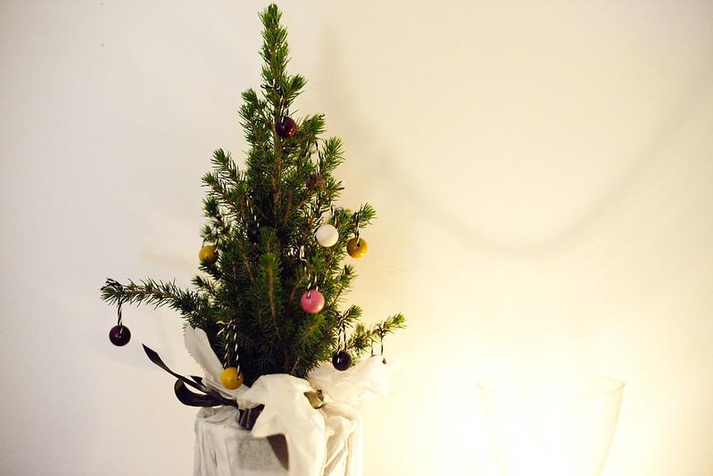 10/12 (The tree)