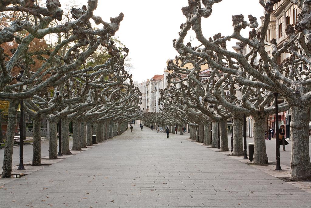 Paseo del Espolon - Burgos - Espanha