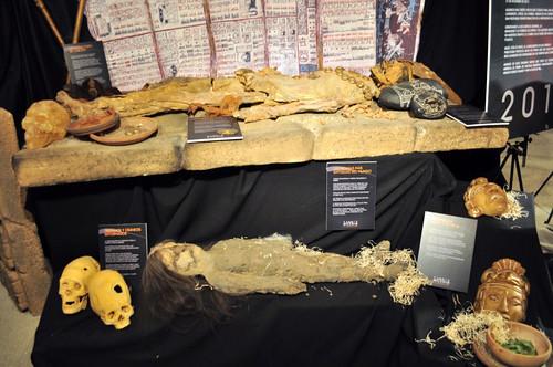 Momias, cabezas reducidas, cráneos deformados, muñecos de magia negra o rituales, ... todo ello forma parte del lado más misterioso de la cultura de américa latina. Viaje en la nave del misterio - 8277743047 0ae9cc570f - Viaje en la nave del misterio