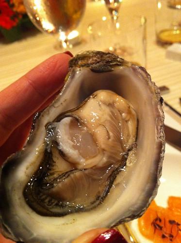 Raw Tasmanian Oyster