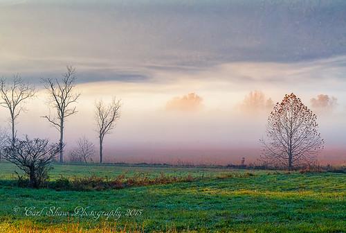 autumn fog sunrise fallcolors smokies smokymountains autumnfog greatsmokymountains cadescove canon7d endlessreach1 carlsshaw carlshawphotography