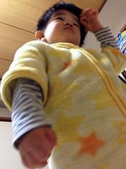 夜寝る前のとらちゃん 2012/12/21