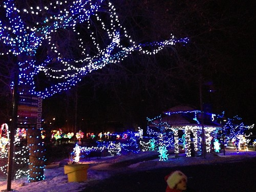 2012-12-20 zoo lights