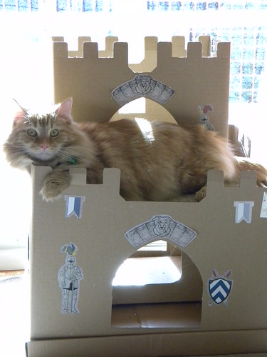 His Royal Fluffiness & his castle