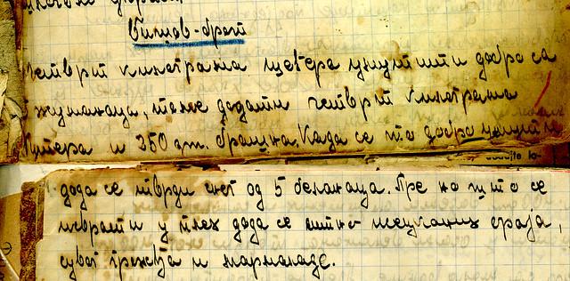 bisovbrot rukopis