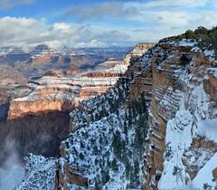 Grand Canyon National Park: Snow - December 24, 2012  0483P