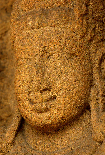 Mesmerizing Smile in Sandstone