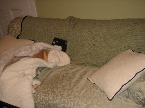 IMG_6461 12-29-12 Couch