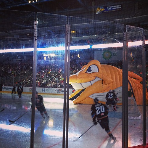 Toledo Walleye hockey game last night with the kiddos.