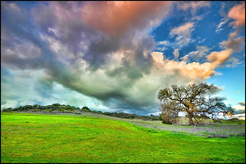 california ca wallpaper color tree clouds landscape oak nikon sigma ojai 1020mm hdr venturacounty d90