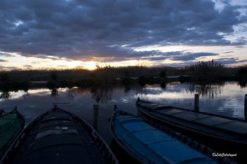 Barcas por la tarde by Loli Calatayud